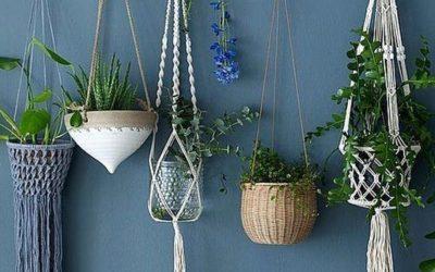 Faites entrer la nature dans votre décoration d'intérieur !